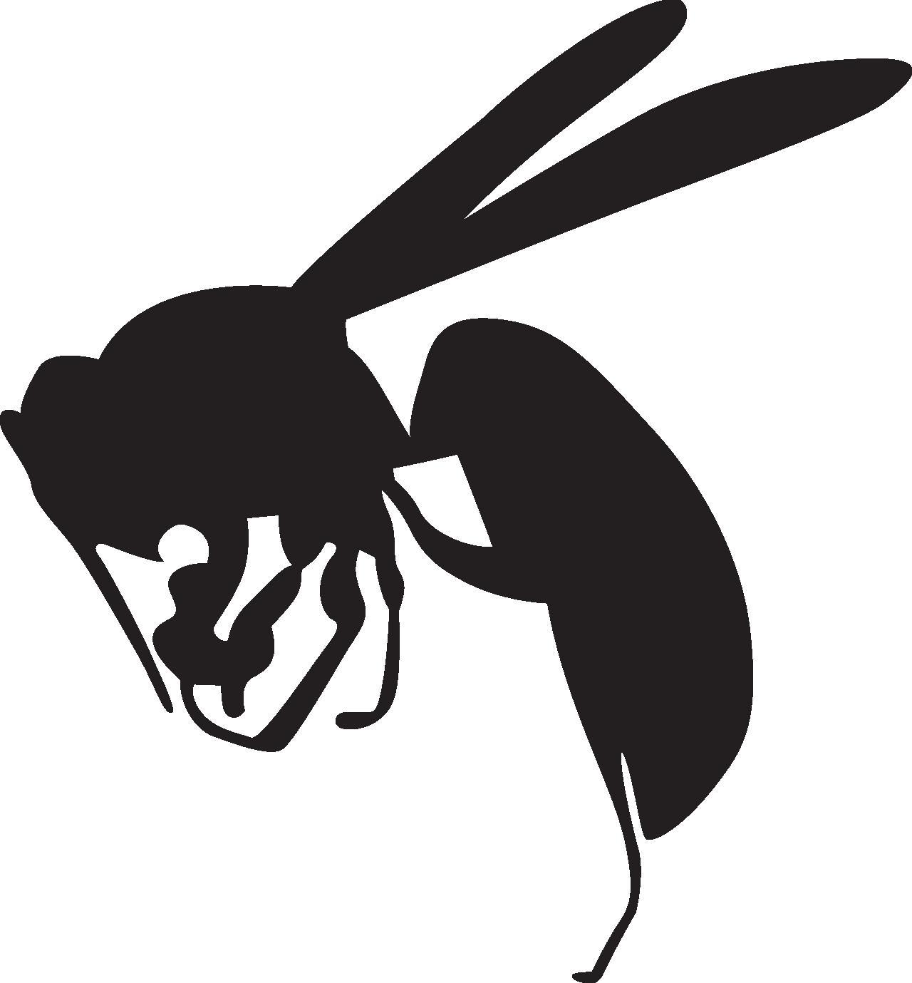 スズメバチに50分間刺されて死亡 女性を救えなかった背景 | ガールズ