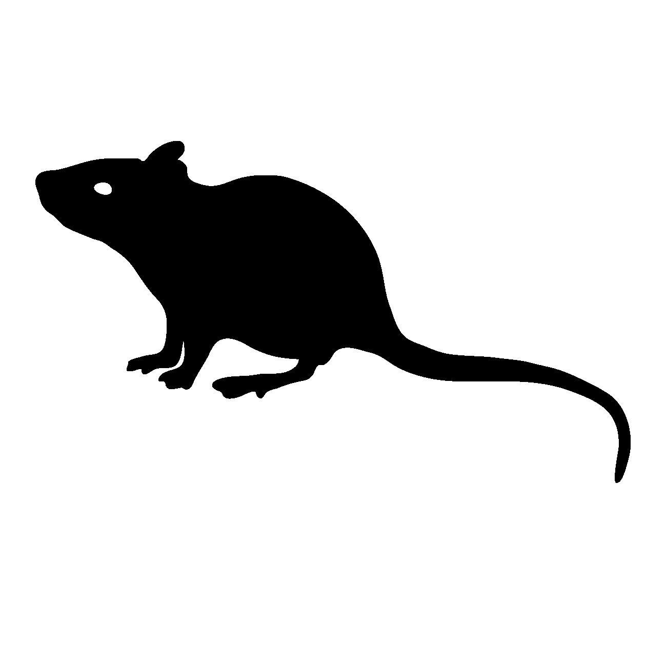 ネズミの画像 p1_32