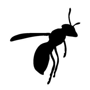 ○アシナガバチ シルエット