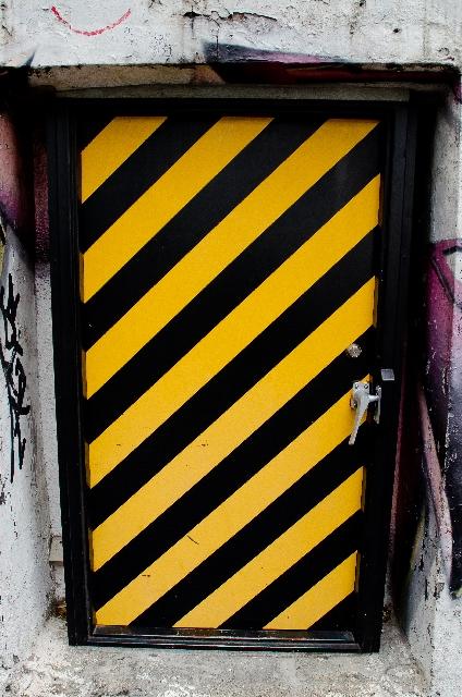 蜂の体の色は警戒色!? | イタチネズミハチ撃退マニュアル